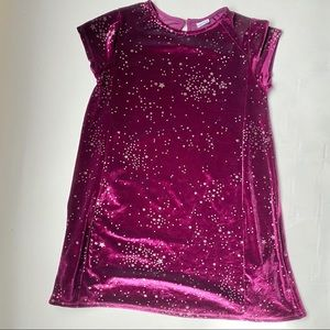 ZARA Girls Collection Purple Velour Dress